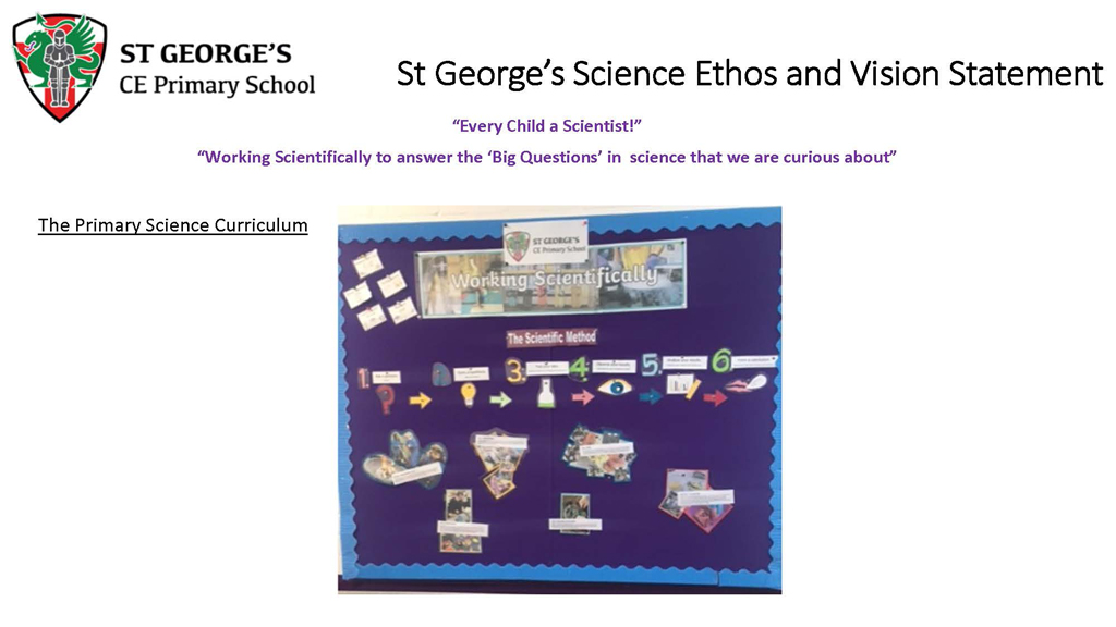 The Primary Science Curriculum 3