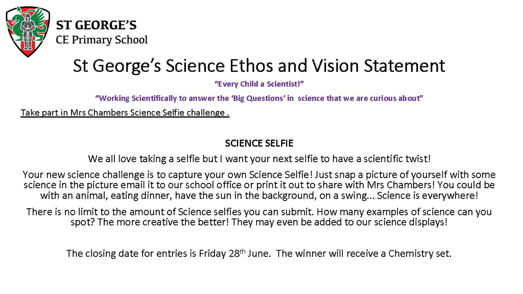 Take part in Mrs Chambers Science Selfie challenge